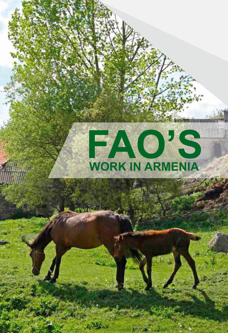 ՊԳԿ-ի աշխատանքը Հայաստանում