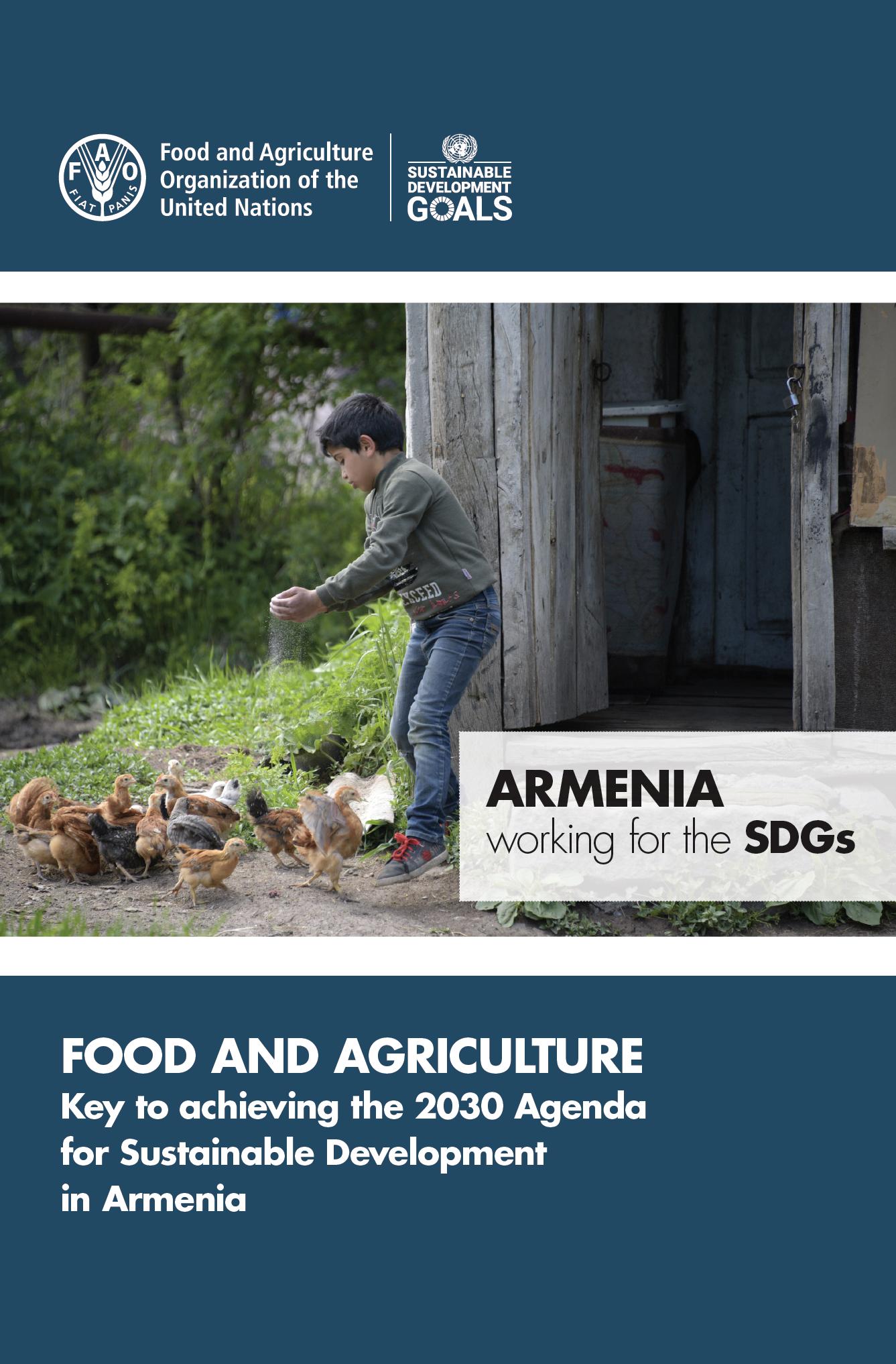 Armenia working for the SDGS brochure cover.