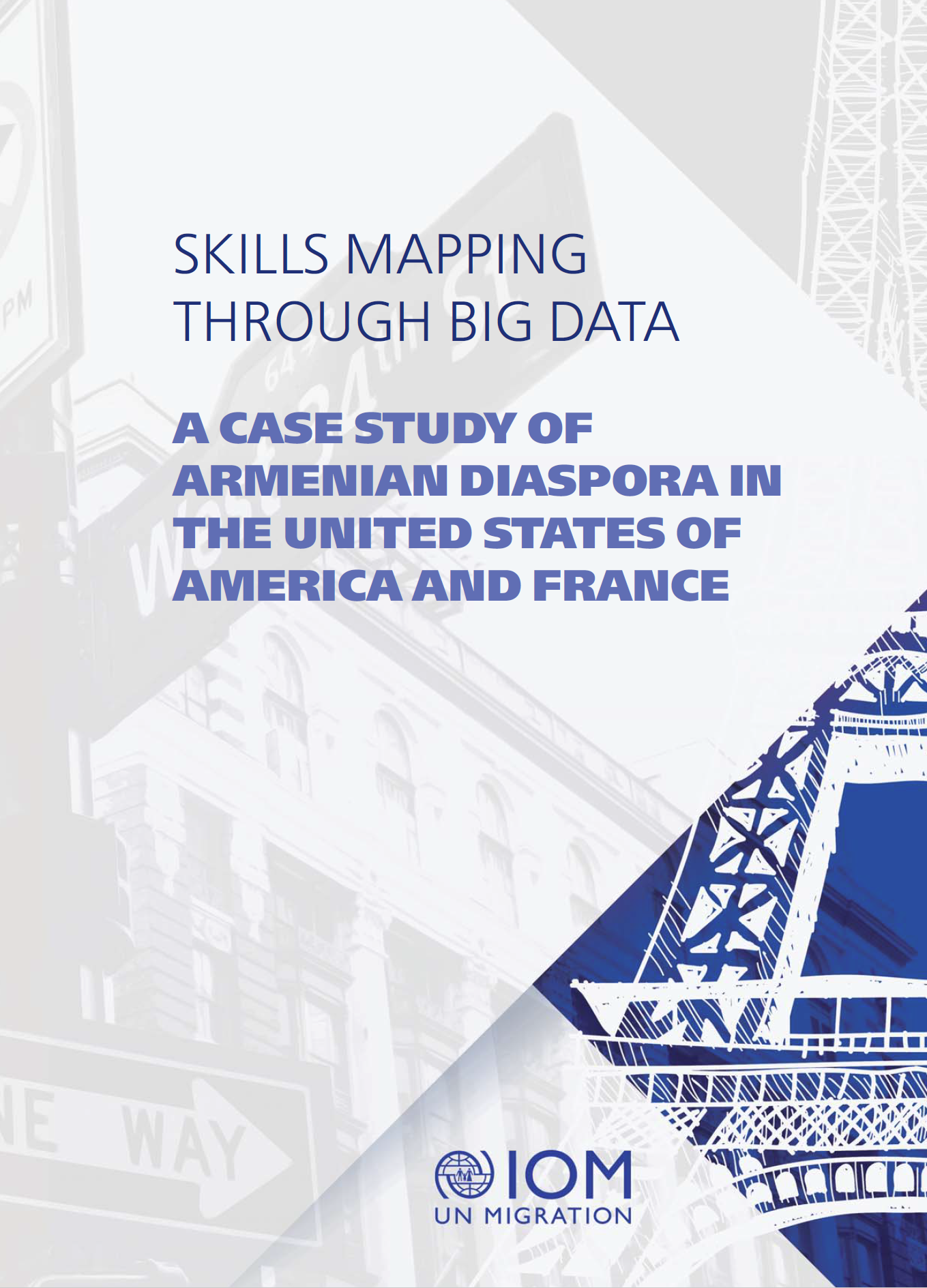 IOM, Skills Mapping through Big Data cover